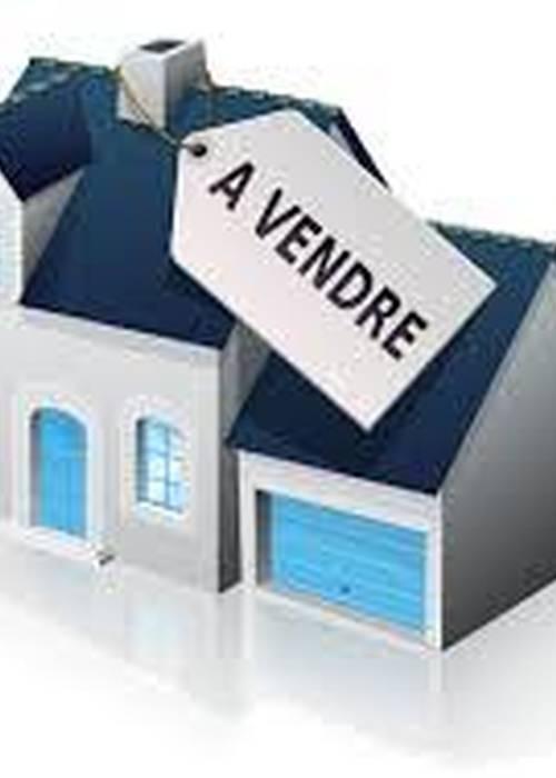 Villa à vendre à Ilafy
