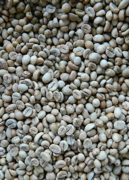 CAFÉ À VENDRE 8500 ar/kg