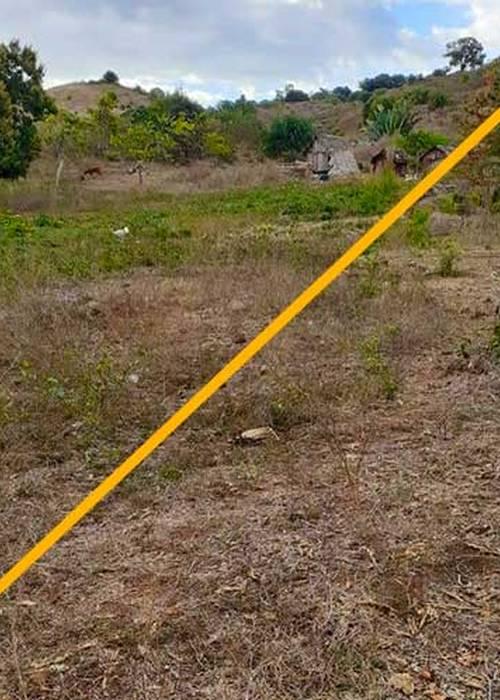 Vente Terrain à Nosy Be Andilana 1435 m² à 100 m de la mer